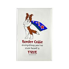 Super Border Collie-red Rectangle Magnet