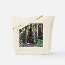 Redwood Trail Tote Bag