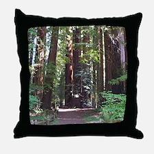 Redwood Trail Throw Pillow