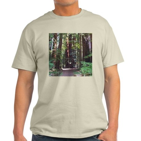 Redwood Trail Light T-Shirt