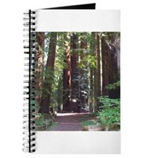 Redwood Trail Journal