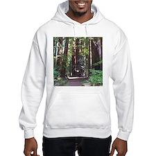 Redwood Trail Hoodie Sweatshirt