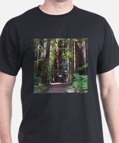 Redwood Trail T-Shirt