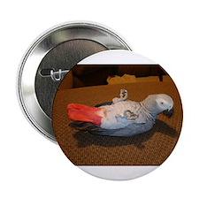 African Grey Button