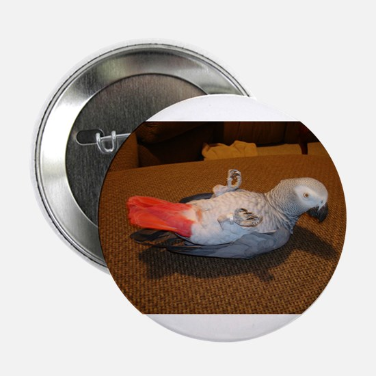 African Grey Button