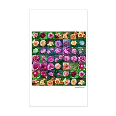 Oil Roses Collage Rectangle Decal