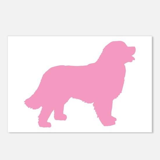 Pink Bernese Mt. Dog Postcards (Package of 8)