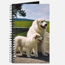 Great Pyrenees Journal - Nousty