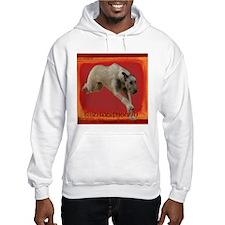 Irish Wolfhound running Hoodie