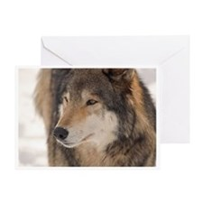 """""""Quiet Look"""" Greeting Card"""
