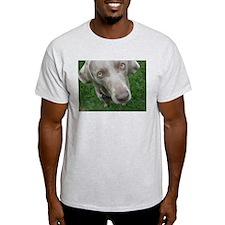 """M"" Ash Grey T-Shirt"