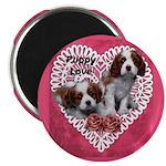 Cavalier Puppy Love 2.25