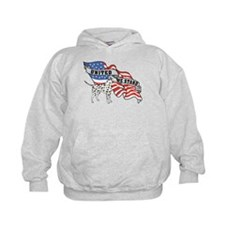 Dalmation United We Stand American Flag Hoodie