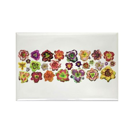 Daylilies Galore Rectangle Magnet (100 pack)