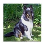 Sheltie in the Shade Tile Coaster
