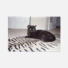 Black Cat Rectangle Magnet