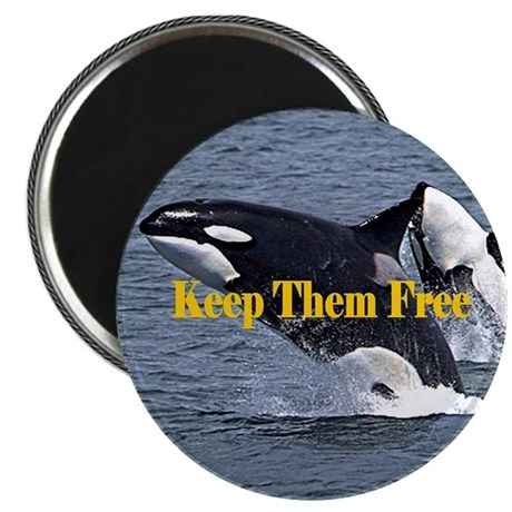 """Dolphins Keep Them Free 2.25"""" Magnet (10 pack)"""