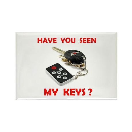 LOST KEYS Rectangle Magnet