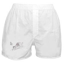 Sisyphus Boxer Shorts