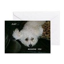 JUST MISSING YOU GREETING CARD