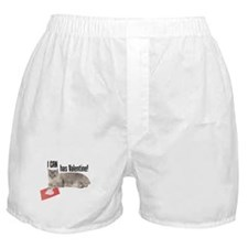 I CAN Has Valentine! Lolcat Boxer Shorts