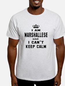 ashevillemars.com Tee