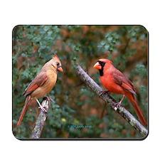 Two Cardinals Mousepad