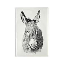 Wild Burro Rectangle Magnet (100 pack)