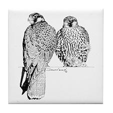 Prairie Falcons Tile Coaster