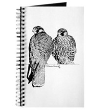 Prairie Falcons Journal