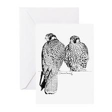 Prairie Falcons Greeting Cards (Pk of 10)