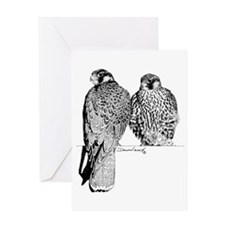 Prairie Falcons Greeting Card