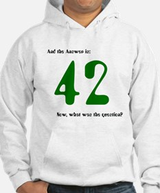 HH Guide - The answer is 42 - Hoodie