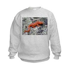 Amphibian Sweatshirt