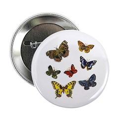 Butterfly 9 2.25