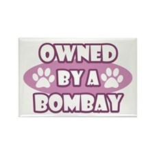 Owned By A Bombay Rectangle Magnet