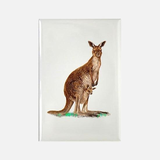 Western Gray Kangaroo Rectangle Magnet