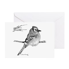 Blue Jay Greeting Cards (Pk of 10)