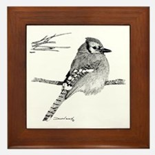 Blue Jay Framed Tile