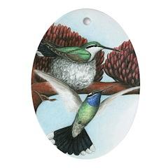 Blue Throated Hummingbirds Oval Ornament