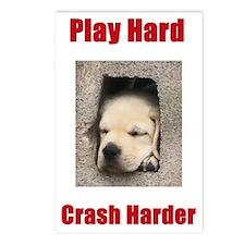 Play Hard, Crash Harder Postcards (Package of 8)