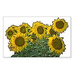 Sunflowers Rectangle Sticker