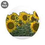Sunflowers 3.5