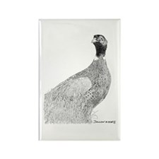 pheasant Rectangle Magnet (100 pack)