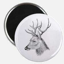Deer Wood II Magnet