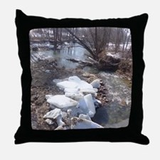 Cute Indiana ice Throw Pillow