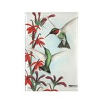 Ruby-throated Hummingbirds Rectangle Magnet (100 p