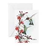 Ruby-throated Hummingbirds Greeting Cards (Pk of 1