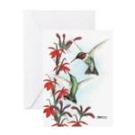 Ruby-throated Hummingbirds Greeting Card