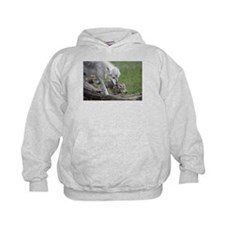 Wolf and Pups Kid's Hoodie